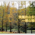 newDSC06157_副本