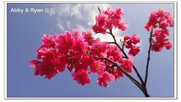 newDSC09469.jpg
