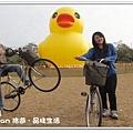 newDSC09906.jpg