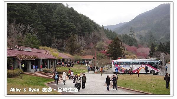 newDSC01802.jpg