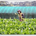 newIMG_1369.jpg
