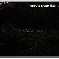 newIMG_2295.jpg
