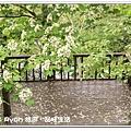 newIMG_3454.jpg