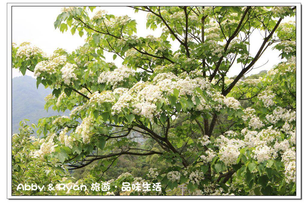 newIMG_3455.jpg