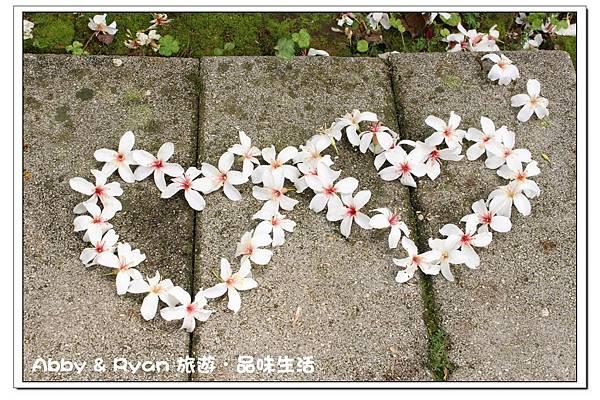 newIMG_3461.jpg