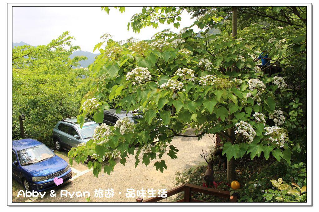 newIMG_3480.jpg