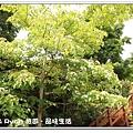newIMG_3504.jpg