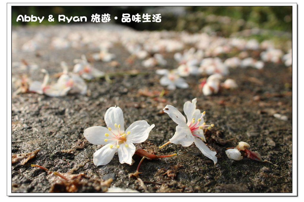 newIMG_3839.jpg