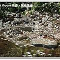 newIMG_3873.jpg