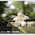 newIMG_3898.jpg
