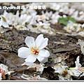 newIMG_3972.jpg