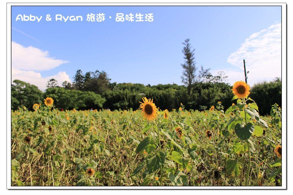 newIMG_6864.jpg