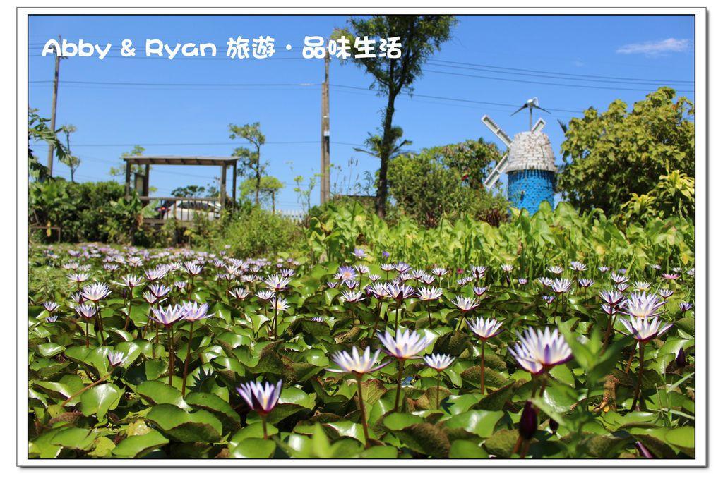 newIMG_0978.jpg