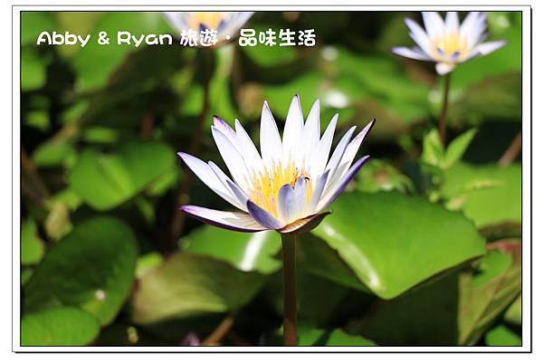 newIMG_4753.jpg
