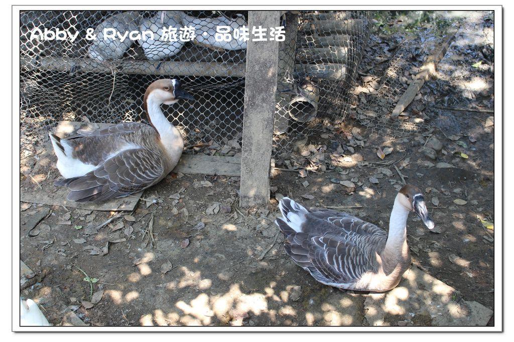 newIMG_1190.jpg
