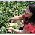 newIMG_4382.jpg