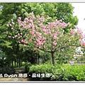 newIMG_6016.jpg