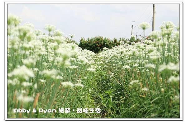newIMG_4501.jpg