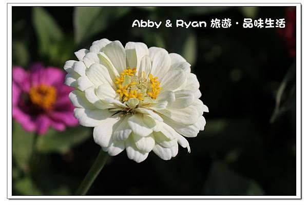 newIMG_6185.jpg