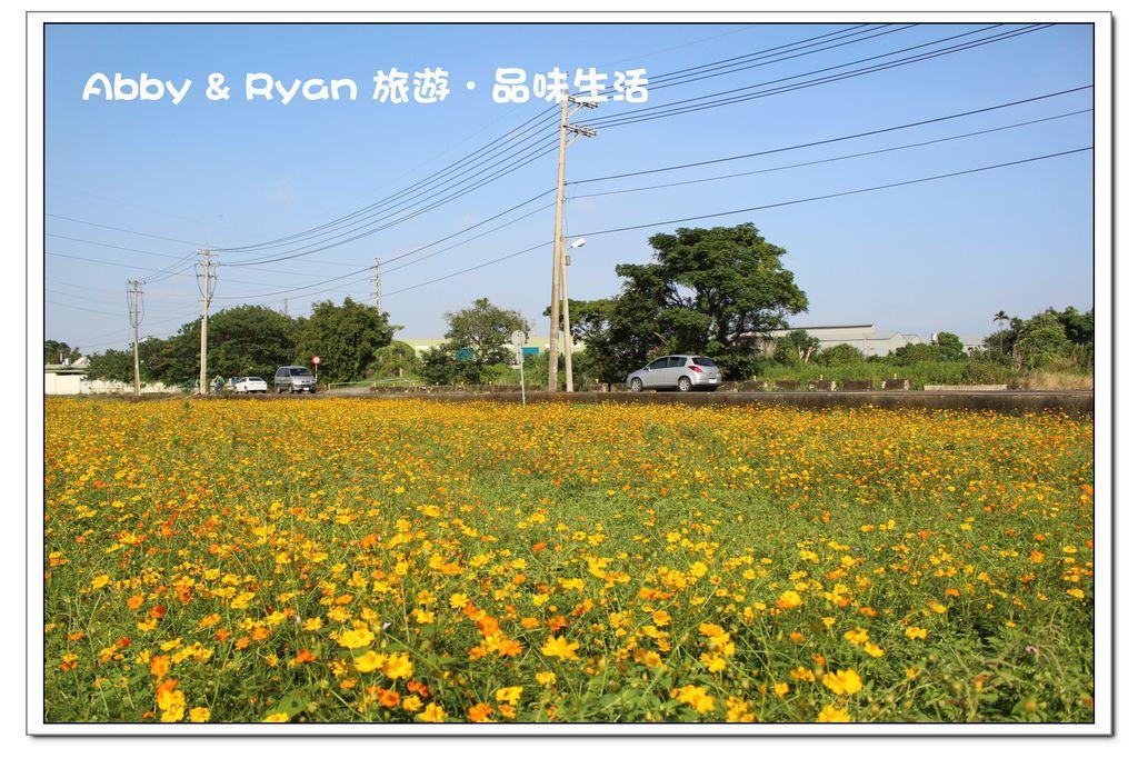 newIMG_6230.jpg