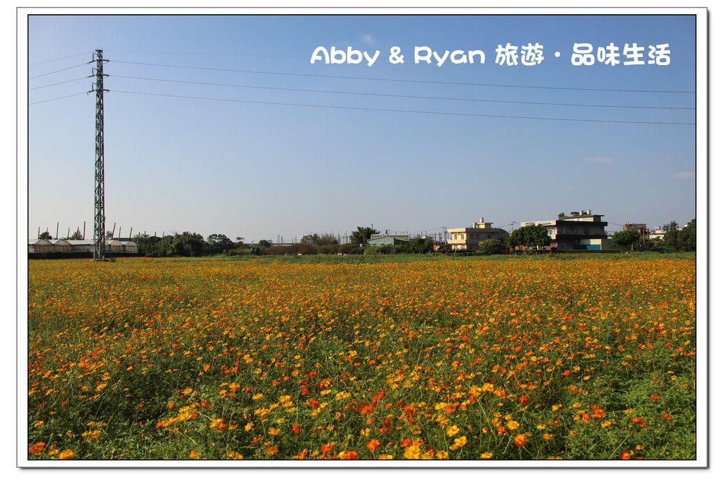 newIMG_6239.jpg