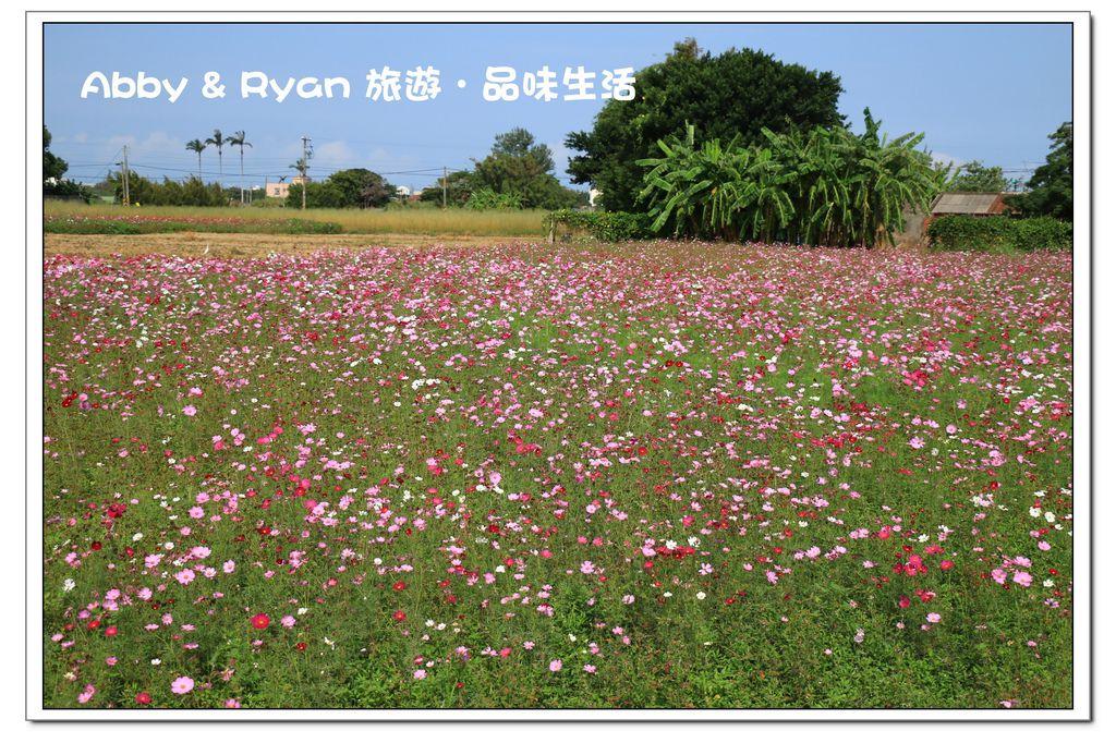 newIMG_0880.jpg