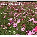 newIMG_0883.jpg
