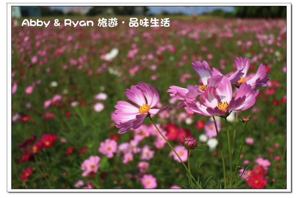 newIMG_0885.jpg