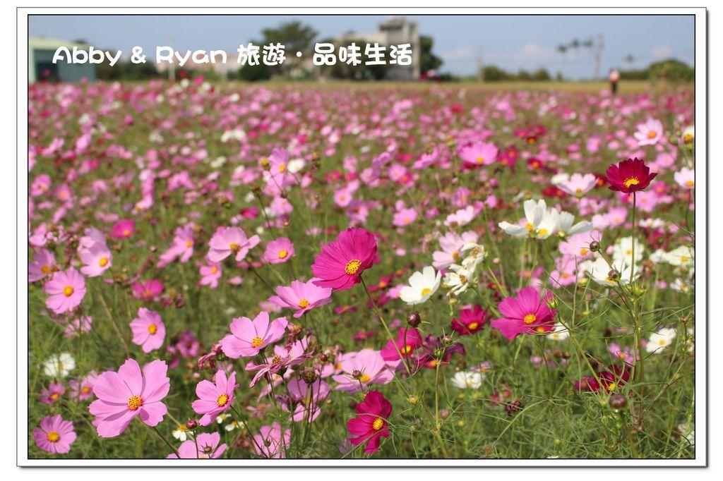 newIMG_9083.jpg