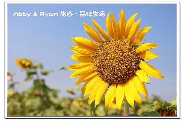 newIMG_9121.jpg