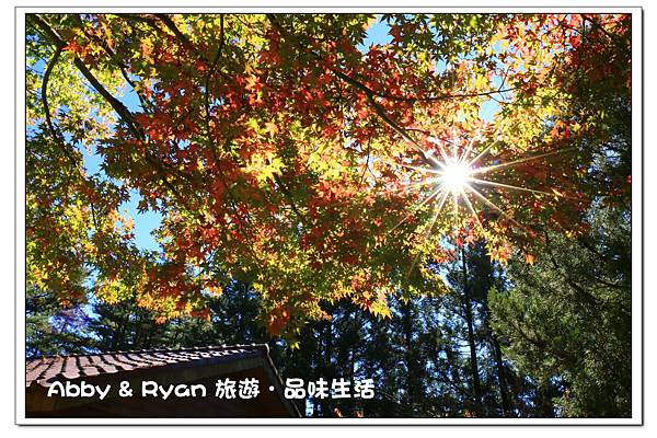 newIMG_1078.jpg