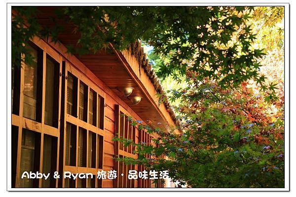 newIMG_1092.jpg