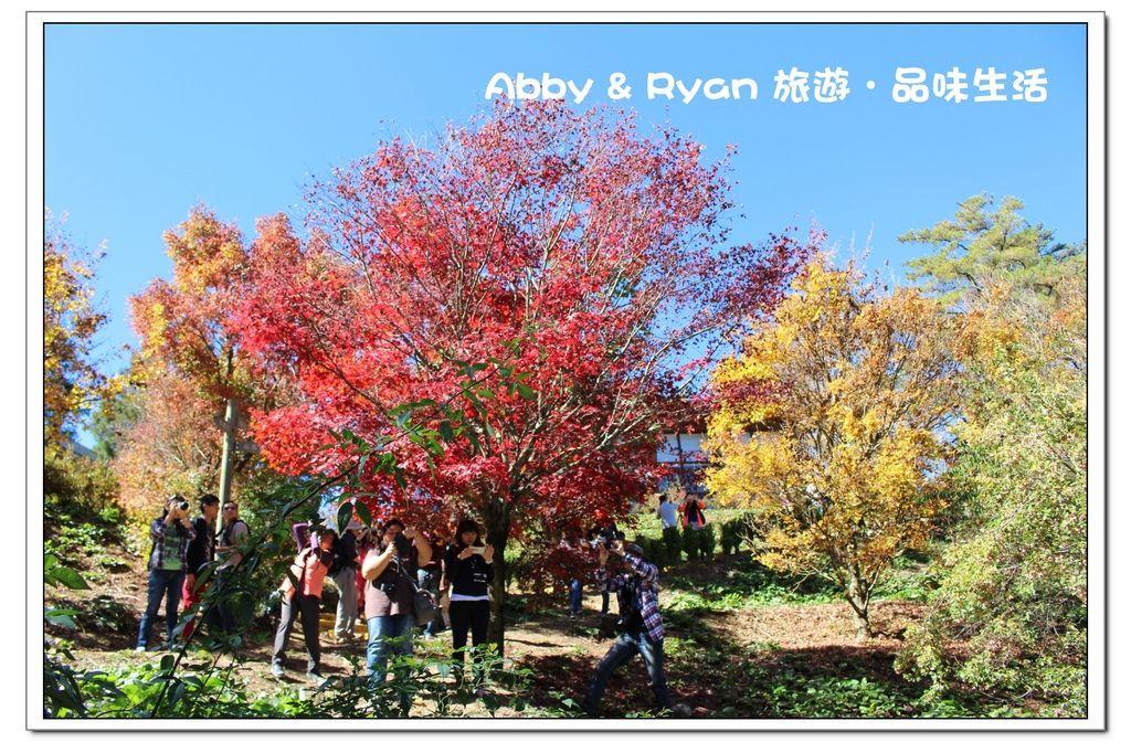 newIMG_9361.jpg