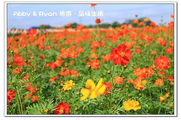 newIMG_1633.jpg