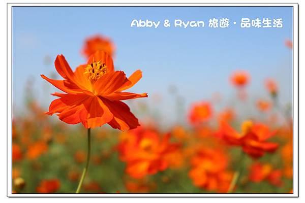 newIMG_9794.jpg