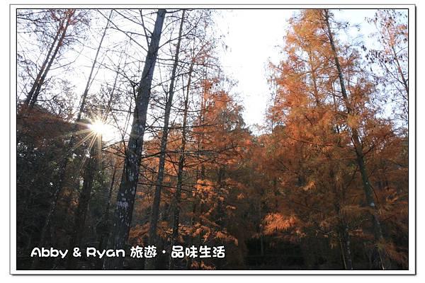 newIMG_3005.jpg