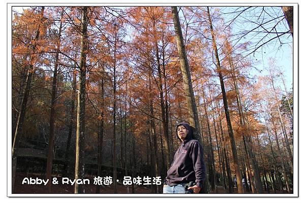 newIMG_3610.jpg