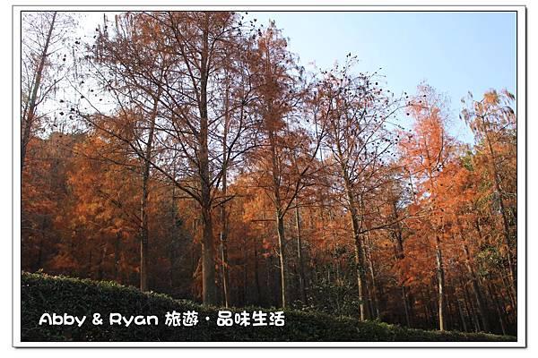 newIMG_3627.jpg