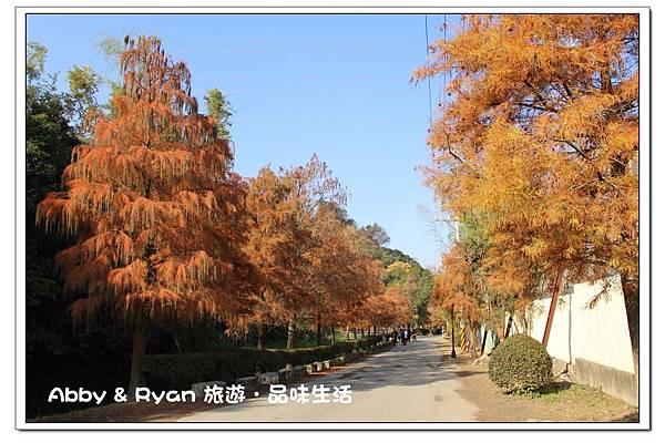 newIMG_3633.jpg