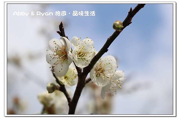 newIMG_5076.jpg