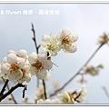newIMG_5085.jpg