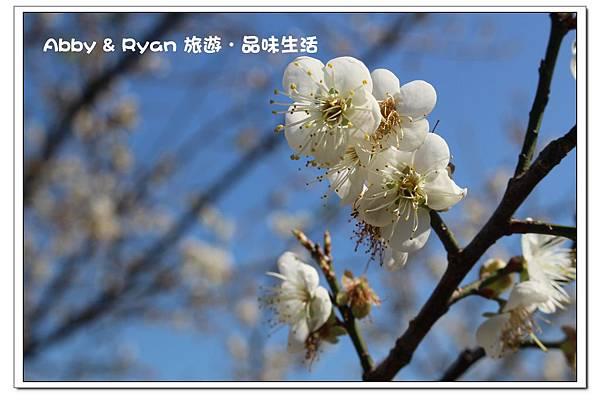 newIMG_6093.jpg