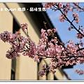 newIMG_4546.jpg