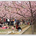 newIMG_7499.jpg