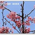 newIMG_5613.jpg