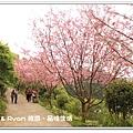 newIMG_9366.jpg