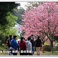 newIMG_9457.jpg