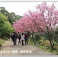 newIMG_9482.jpg