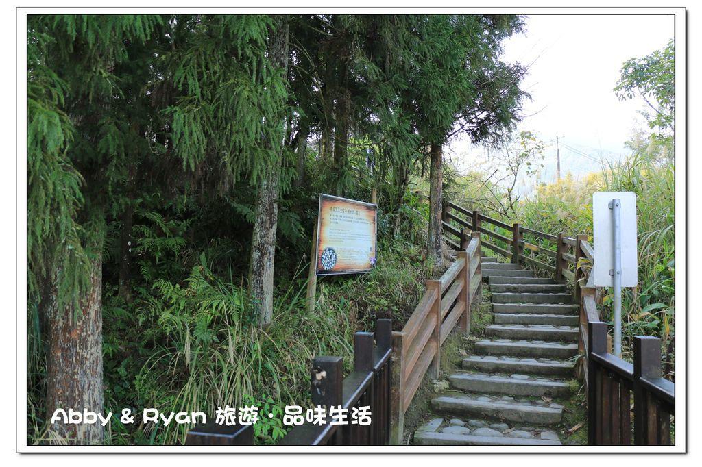 newIMG_4745.jpg