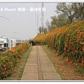 newIMG_9521.jpg